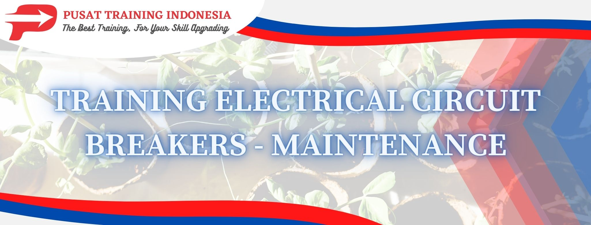 training-electrical-circuit-breakers-maintenance