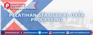 statistical-data-processing