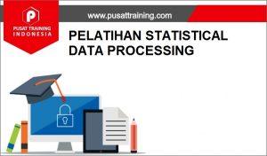 PELATIHAN STATISTICAL DATA PROCESSING